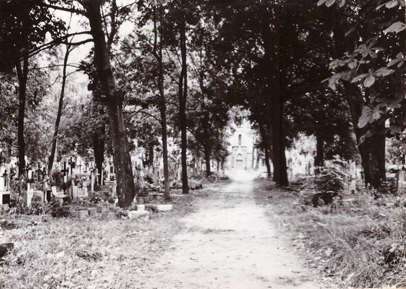 cmentarz11